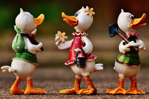 duck labor